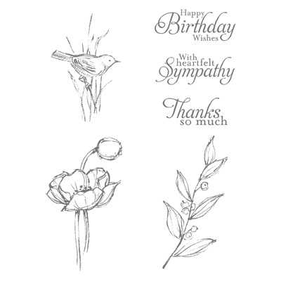 Simply Sketched Hostess Stamp Set