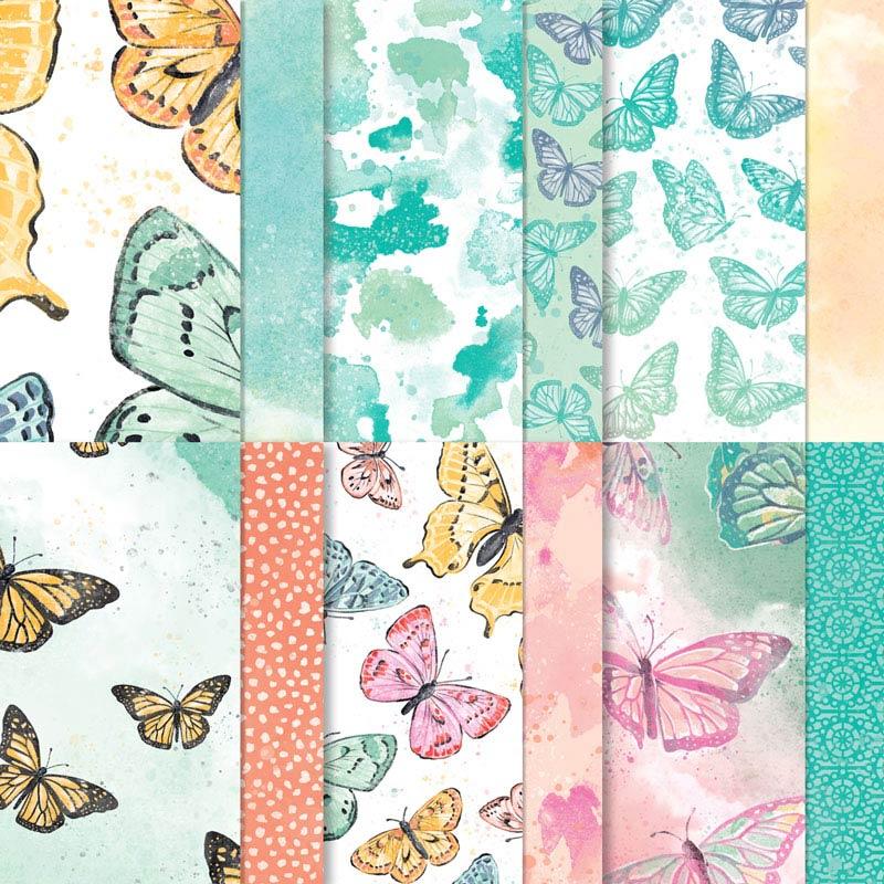Butterfly Bijou DSP