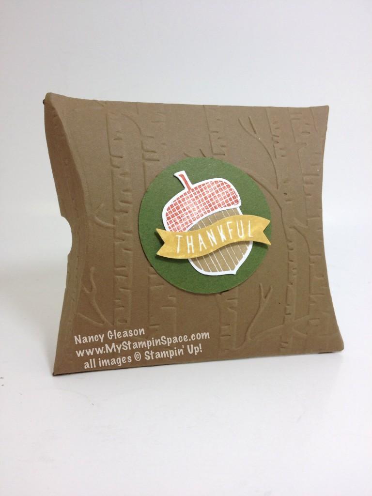 Acorny Pillow Box