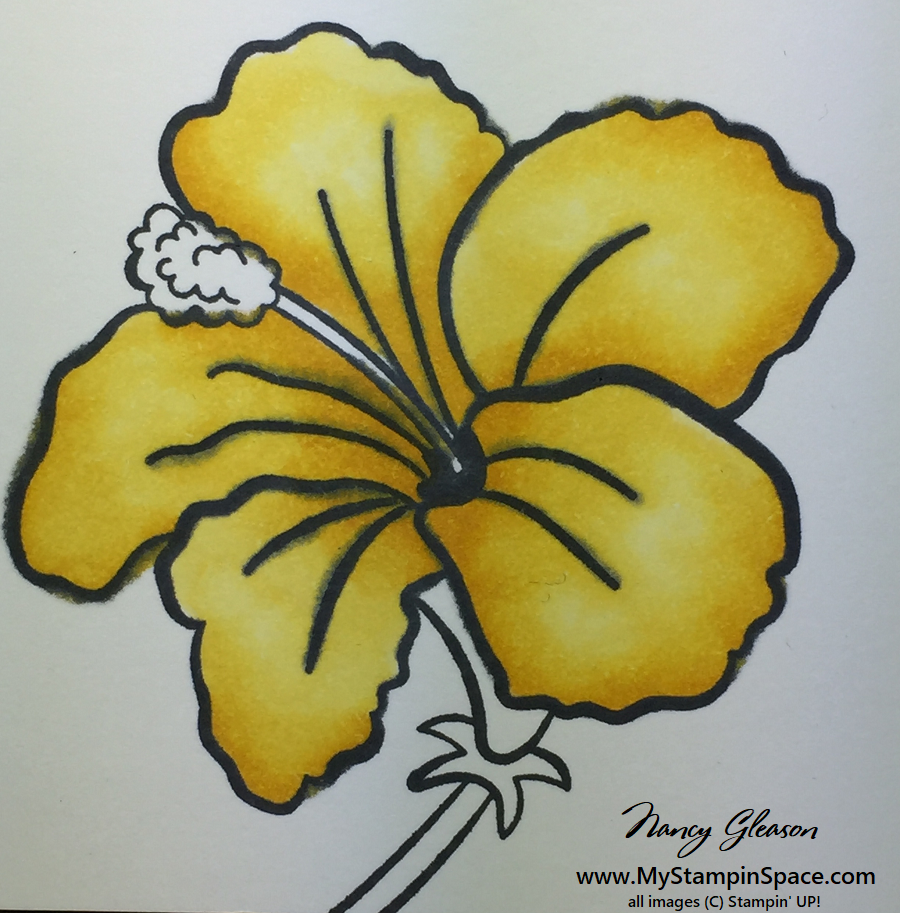 a yellow colored Hibiscus flower colored with Stampin Blends
