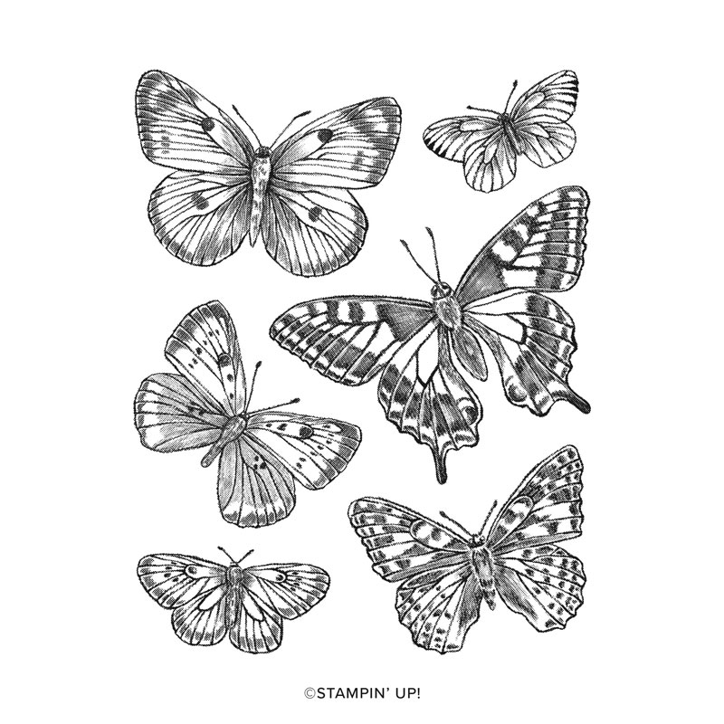 Butterfly Brilliance Cling Stamp Set 155092